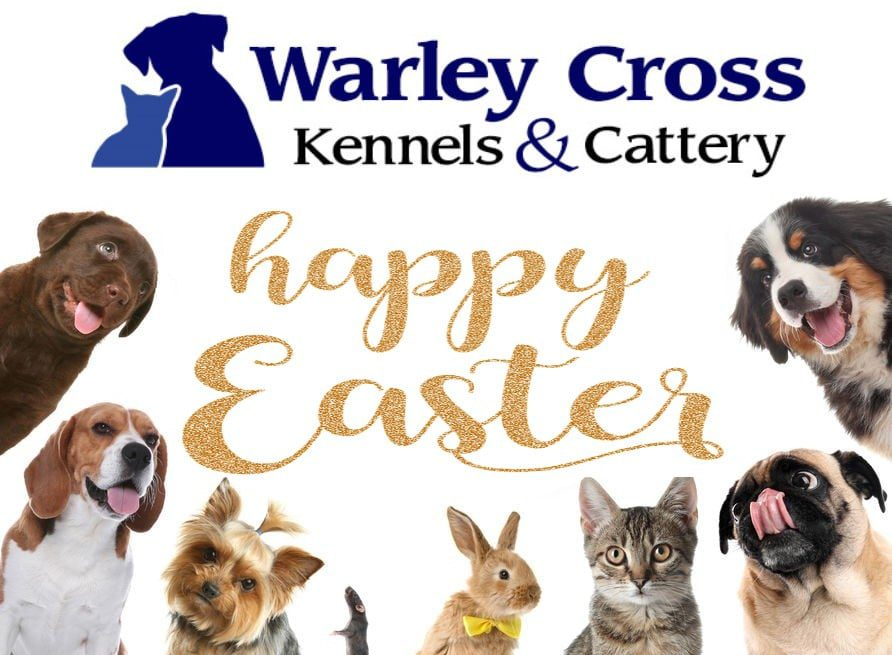 Easter at Warley Cross Kennels and Cattery