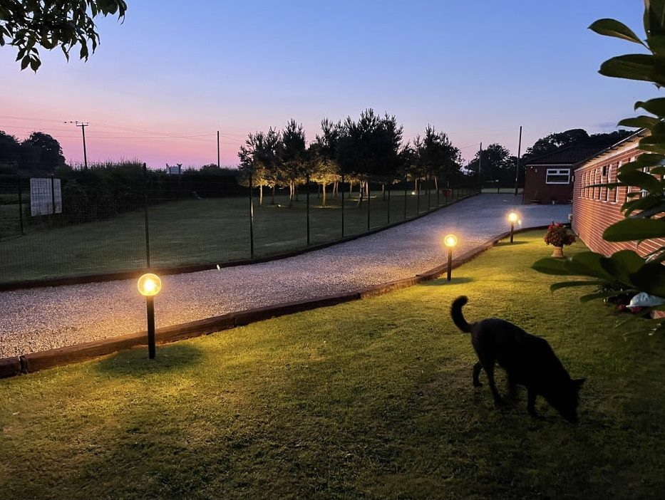 Evening at Warley Cross Kennels and Cattery